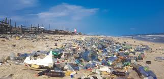 Coca-Cola, Pepsi feature the 20 organizations delivering the most sea contamination