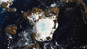 A heat-wave in Antarctica's northern tip melted 20% of an island's snow in 9 days